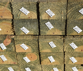 Treated timber for fencing projects
